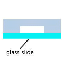 bond to glass slide