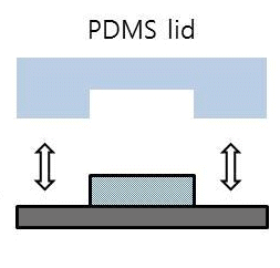 detached cured pdms